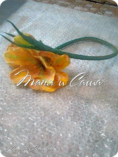 Цветы в шерсти или шерсть в цветах. фото 2
