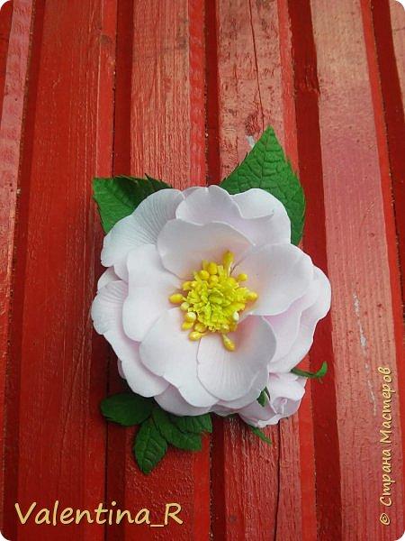 Цветок розы и гортензии. фото 2