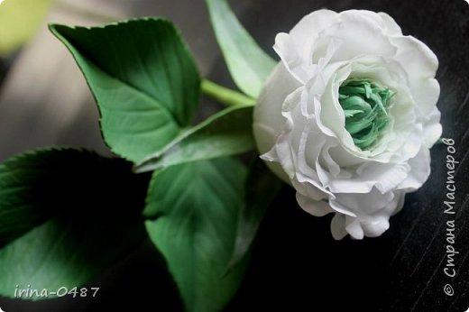 """Хочу поделиться с вами своей новой работой, роза необыкновенной красоты Грин Ай (Green Eye) """"Зеленый глаз"""". Выполнена по мастер классу в Школе Фом-флористики.  фото 2"""