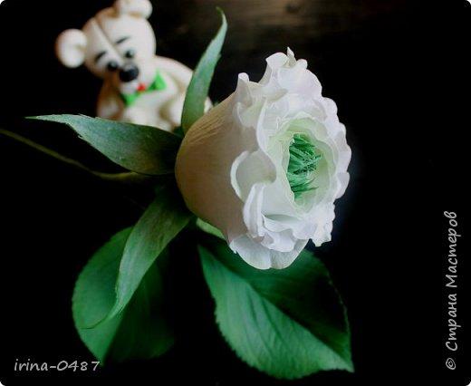 """Хочу поделиться с вами своей новой работой, роза необыкновенной красоты Грин Ай (Green Eye) """"Зеленый глаз"""". Выполнена по мастер классу в Школе Фом-флористики.  фото 3"""