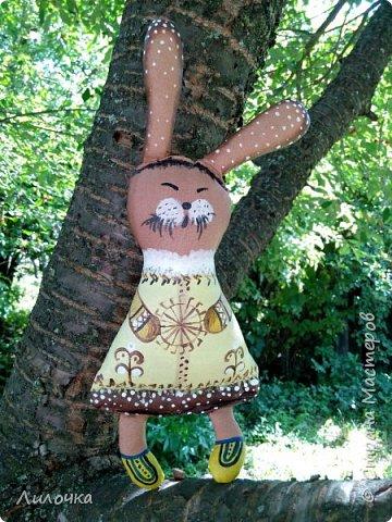 Чукотский заяц фото 1