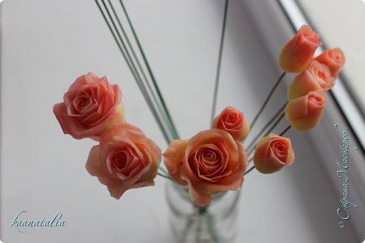 Сначала чуть-чуть готовых роз... фото 20