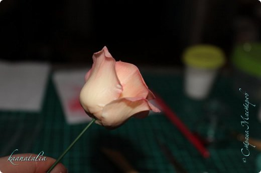Сначала чуть-чуть готовых роз... фото 18
