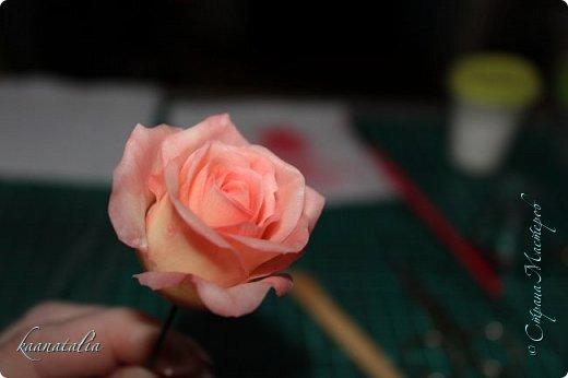 Сначала чуть-чуть готовых роз... фото 19