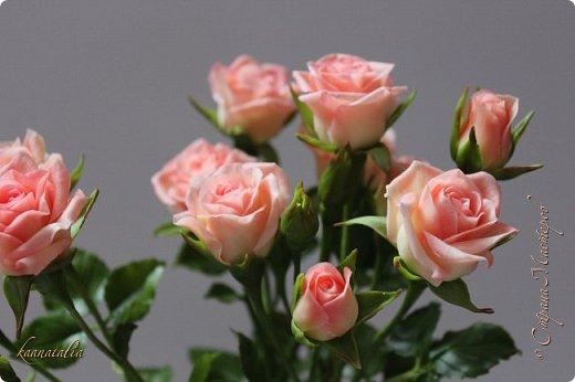 Сначала чуть-чуть готовых роз... фото 1