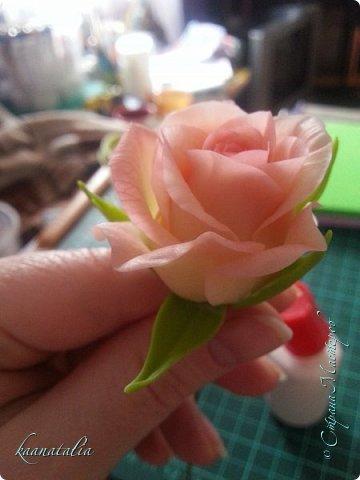 Сначала чуть-чуть готовых роз... фото 29