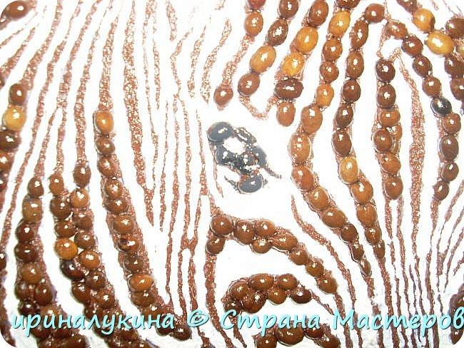 использовала зерна кофе. молотый кофе. шпаклевку белую и масляную краску для фона. фото 2