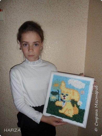 собачка Алсу фото 10