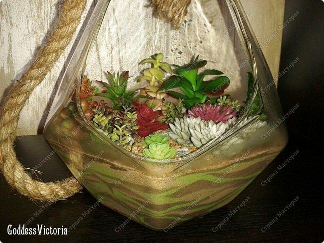 Флорариум для веранды и т.п. фото 4