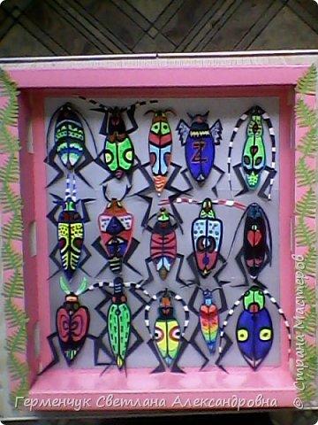 Увидела в Интернете информацию об использовании  переработанной  бумаги для создания коллекции насекомых.(   Бельгия )  Ведь переработка 1 т бумаги экономит 17 деревьев. 1 дерево может отфильтровать до  30 кг загрязненных веществ  из воздуха каждый год. Решила сделать  наглядное пособие  по охране окружающей среды -коллекцию  жуков  из картона.Насекомые    ведь тоже страдают от  загрязнения  природы фото 1