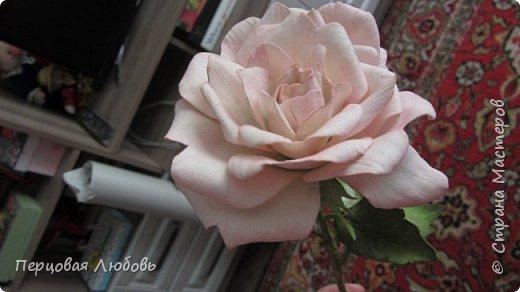 Здравствуйте друзья! Сегодня я вам представляю цветок из иранского фоамирана, это роза в нежных тонах. Я и в жизни люблю именно в пастельных оттенках. Очень полюбила этот материал, работать с ним одно удовольствие!  Лепестки теснила на молде, листья тоже.  фото 2