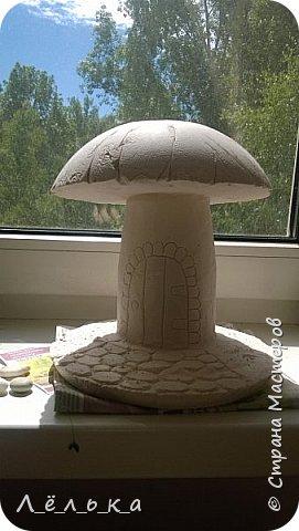 Всем привет! Вот как то нашла на просторах страны мастеров чудо-гриб http://stranamasterov.ru/node/509489?c=favorite. Решила что как-нибудь попробую. И вот... фото 2