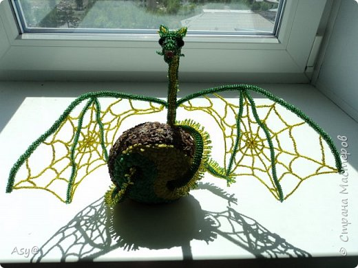 Дракон-паутиник  фото 3