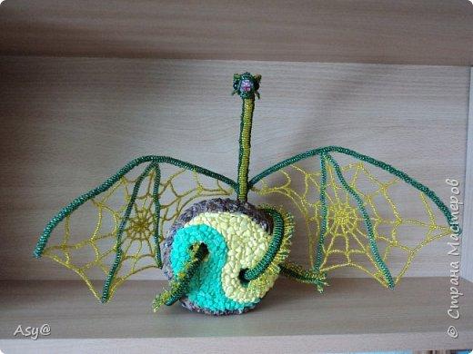 Дракон-паутиник  фото 1