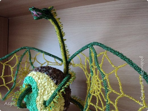 Дракон-паутиник  фото 4