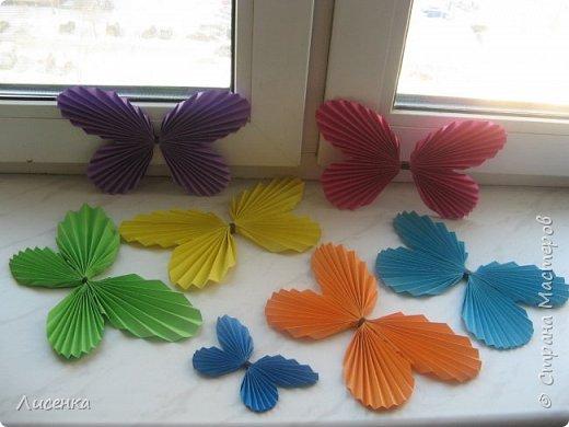 Вот они мои бабочки всех цветов радуги.
