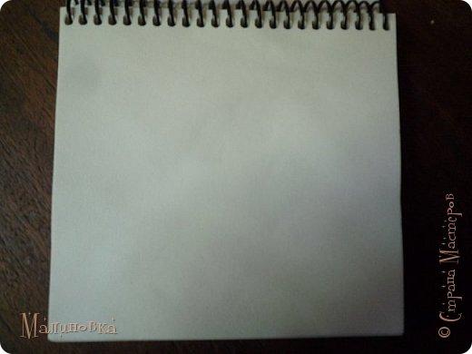 Добрый вечер!  Сегодня я покажу вам, как нарисовать Алису из сказки Льюиса Кэрролла. Нам нужны: простой карандаш, ластик, цветные карандаши (у меня 24 цвета), коричневая, черная и зеленая ручки, белый линер (белая ручка). Ну и, естественно, бумага, на которой вы будете рисовать... фото 2