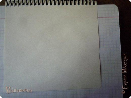 Добрый вечер!  Сегодня я покажу вам, как нарисовать Алису из сказки Льюиса Кэрролла. Нам нужны: простой карандаш, ластик, цветные карандаши (у меня 24 цвета), коричневая, черная и зеленая ручки, белый линер (белая ручка). Ну и, естественно, бумага, на которой вы будете рисовать... фото 3
