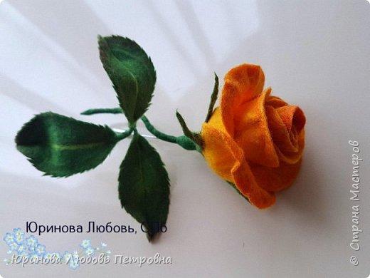 Чайная роза желтая. Брошь. Шерсть. фото 2