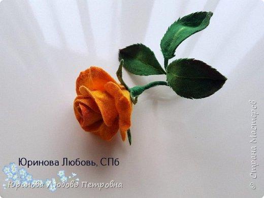 Чайная роза желтая. Брошь. Шерсть. фото 3