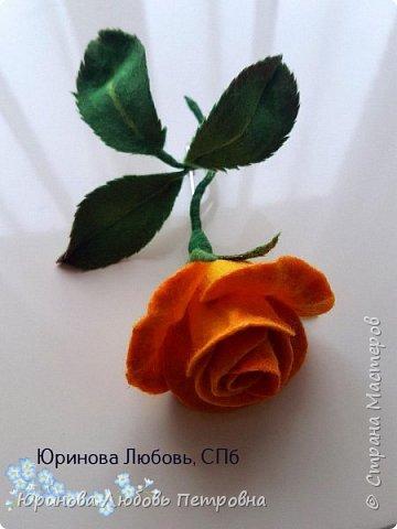Чайная роза желтая. Брошь. Шерсть. фото 1