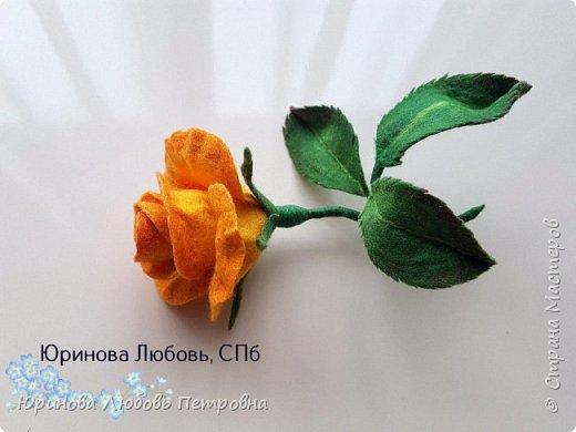 Чайная роза желтая. Брошь. Шерсть. фото 4