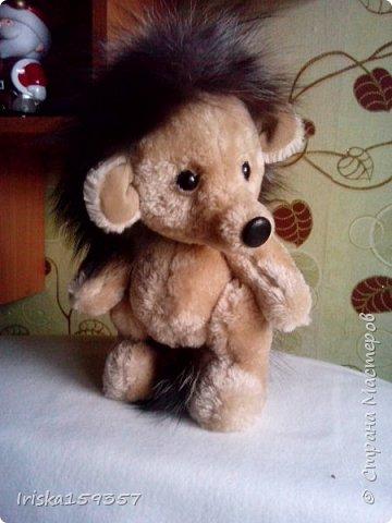 Загорелась я как-то идеей сшить тедди, первый мой медведь (фото далее) получился корявенький, но миленький. И тут бабушка моего мужа отдала мне лоскутки (теперь их мне несут все родственники, друзья и просто знакомые), а в них мааааленький кусочек плюша, подобрала под него выкройку и вот, представляю, мини-Мишка на шплинтах, глазки стеклянные, утяжелен стеклянным гранулятом. фото 10