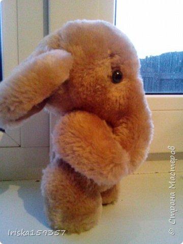 Загорелась я как-то идеей сшить тедди, первый мой медведь (фото далее) получился корявенький, но миленький. И тут бабушка моего мужа отдала мне лоскутки (теперь их мне несут все родственники, друзья и просто знакомые), а в них мааааленький кусочек плюша, подобрала под него выкройку и вот, представляю, мини-Мишка на шплинтах, глазки стеклянные, утяжелен стеклянным гранулятом. фото 11
