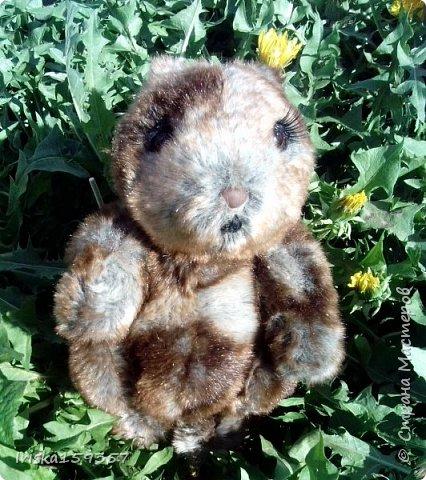 Загорелась я как-то идеей сшить тедди, первый мой медведь (фото далее) получился корявенький, но миленький. И тут бабушка моего мужа отдала мне лоскутки (теперь их мне несут все родственники, друзья и просто знакомые), а в них мааааленький кусочек плюша, подобрала под него выкройку и вот, представляю, мини-Мишка на шплинтах, глазки стеклянные, утяжелен стеклянным гранулятом. фото 19