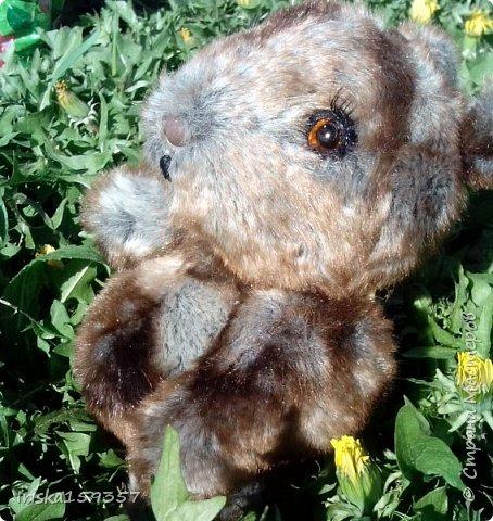 Загорелась я как-то идеей сшить тедди, первый мой медведь (фото далее) получился корявенький, но миленький. И тут бабушка моего мужа отдала мне лоскутки (теперь их мне несут все родственники, друзья и просто знакомые), а в них мааааленький кусочек плюша, подобрала под него выкройку и вот, представляю, мини-Мишка на шплинтах, глазки стеклянные, утяжелен стеклянным гранулятом. фото 18