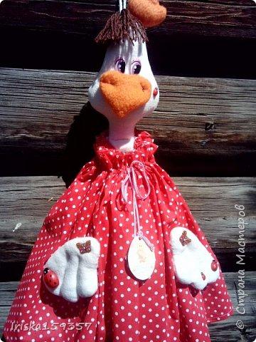 Прознали в нашем поселке, что я шью игрушки, и вот заказали сшить какую-нибудь игрушку на кухню. И получилась у меня курица-пакетница. Сшита из флиса, бязи и ситца. фото 2
