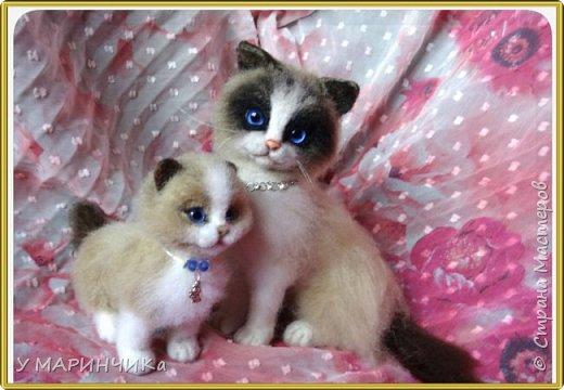 Мама кошка с котенком фото 1