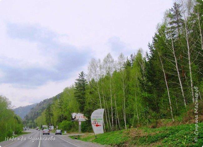 По дороге в Горно-Алтайск мы ездим очень часто, все уже должно бы примелькаться, но нет! Этой красотой налюбоваться невозможно. фото 3