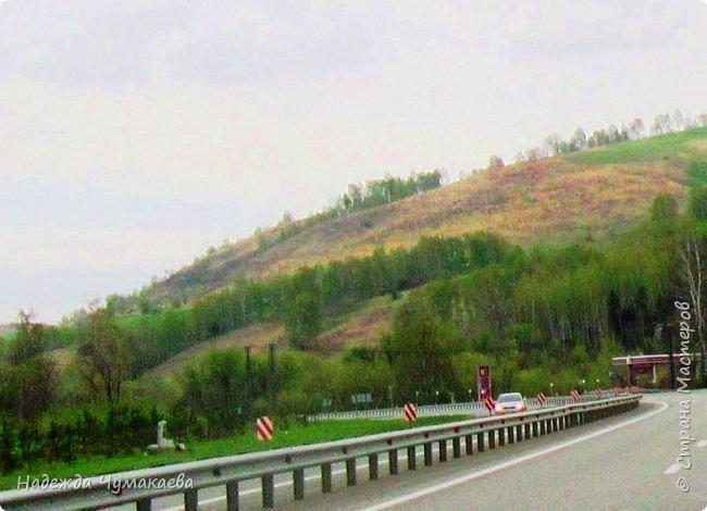 По дороге в Горно-Алтайск мы ездим очень часто, все уже должно бы примелькаться, но нет! Этой красотой налюбоваться невозможно. фото 6