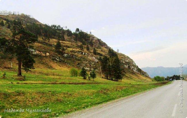 По дороге в Горно-Алтайск мы ездим очень часто, все уже должно бы примелькаться, но нет! Этой красотой налюбоваться невозможно. фото 17