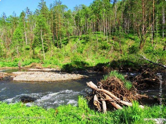 По дороге в Горно-Алтайск мы ездим очень часто, все уже должно бы примелькаться, но нет! Этой красотой налюбоваться невозможно. фото 22