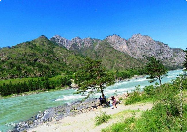 По дороге в Горно-Алтайск мы ездим очень часто, все уже должно бы примелькаться, но нет! Этой красотой налюбоваться невозможно. фото 35