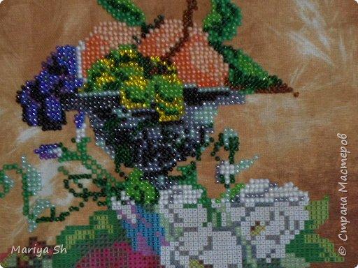 """Это моя первая картина, вышитая бисером. Я использовала набор """"Радуга бисера"""" (производитель: ООО """"Кроше"""") с нанесенным на канве рисунком.  фото 4"""