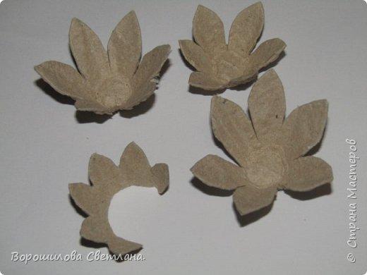 Я очень люблю суккуленты,поэтому попыталась цветы сделать похожими на них,насколько получилось судить вам) Понадобится:яичные лотки,ножницы,горячий клей,гуашь,кисточка. фото 3