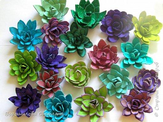 Я очень люблю суккуленты,поэтому попыталась цветы сделать похожими на них,насколько получилось судить вам) Понадобится:яичные лотки,ножницы,горячий клей,гуашь,кисточка. фото 6