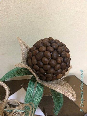 Этот кофейный букет для всех любителей кофе! Выполнен из кофейных зерен, кокосовой стружки, джута (джутовая филигрань) и салфетки (декупаж) фото 3