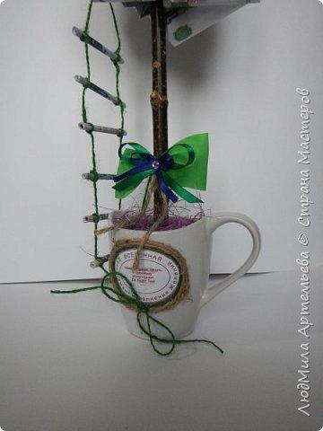 Вот такое богатое денежное деревце для приманивания достатка и материального благополучия в дом. фото 3