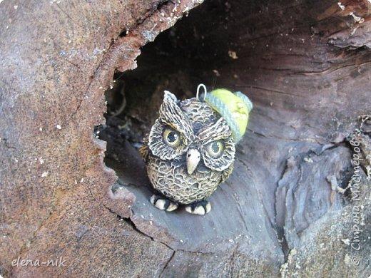 Загадка: Сердитый недотрога Живет в глуши лесной, Иголок очень много, А нитки - ни одной.    Ничего нового,  решила повторить прошлогоднего ёжика. фото 6