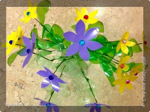 Вот такие цветочки сотворились у меня из пластиковых бутылок  фото 2