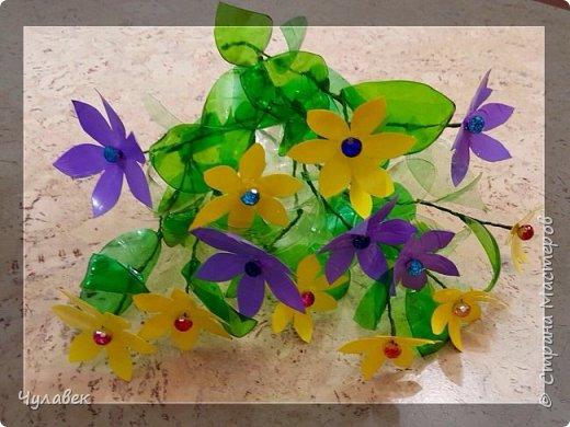Вот такие цветочки сотворились у меня из пластиковых бутылок  фото 1