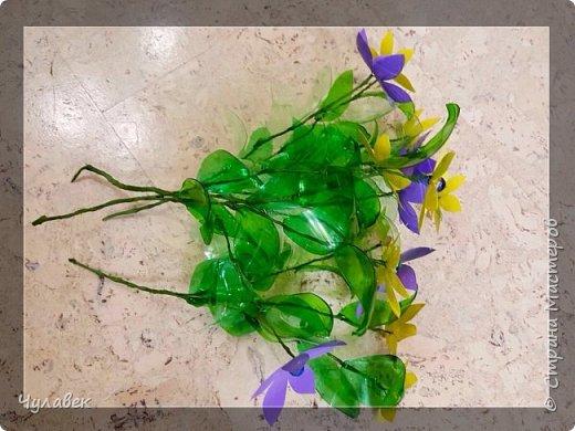 Вот такие цветочки сотворились у меня из пластиковых бутылок  фото 4