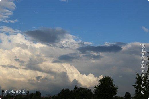 Здравствуйте!! Очень рада всем!!!  Сейчас уже меньше возможности фотографировать природу - дожди... Вот уже неделю просветления на горизонте всё реже и реже... Сегодня t +11.. За прошедший первый летний месяц самая высокая температура была +23,и то наверное,один день всего. В тёплые дни она не поднималась выше +20. фото 1