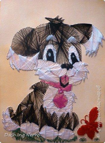 """""""Собачка играет с бабочкой"""". Изонить. Вышивка цветными нитями на картоне. По мотивам картины в технике изонить с изображением собачки. Я нашла её в Интернете. Мне до того понравилась эта прелестная собачка, что я очень захотела вышить для моей бабушки в подарок такую же картину с этой собачкой. С отличиями от оригинала. Моя бабочка красного цвета, а на оригинальной картине бабочка вышита голубыми и синими нитями. Я вышивала эту собачку летом в июне 2012 года. В этом году летом 2017 года я её поменяла.    фото 1"""