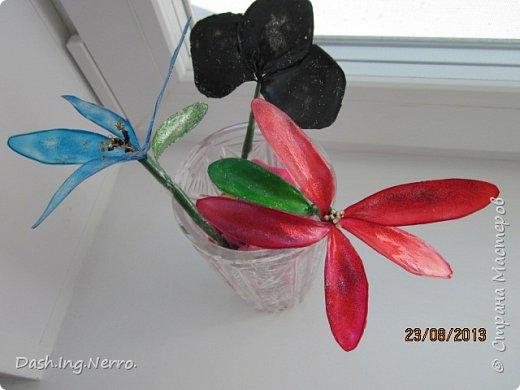 """""""Витражные цветы в хрустальной вазе"""".  Так выглядели витражные цветы, когда я их поставила на окно в хрустальную вазу. Чёрный трилистник тоже витражный и к сожалению, он где-то потерялся.  фото 1"""