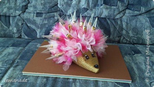 Здравствуйте мастра и мастерицы, хочу поделиться с вами созданием своего красочного ёжика, за вдохновение  спасибо Светлане и её МК http://stranamasterov.ru/node/229835. фото 4